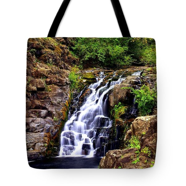 12314 Tote Bag by Marty Koch