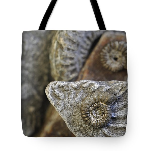 Tote Bag featuring the photograph 130109p053 by Arterra Picture Library