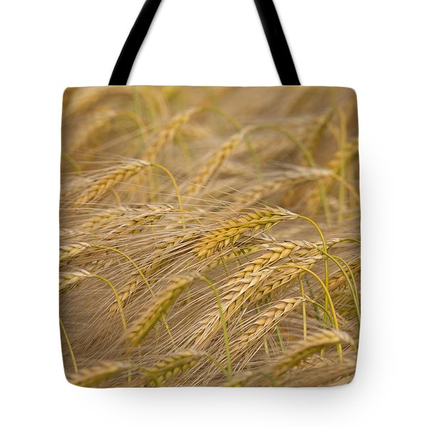 Tote Bag featuring the photograph 130109p155 by Arterra Picture Library