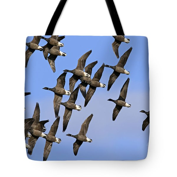 Tote Bag featuring the photograph 130109p166 by Arterra Picture Library
