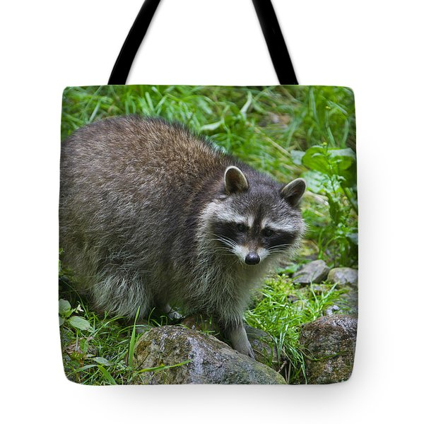 Tote Bag featuring the photograph 130201p045 by Arterra Picture Library