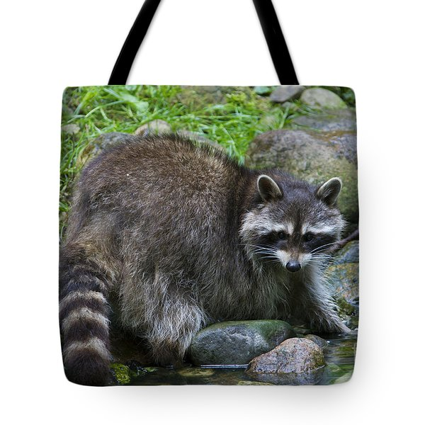 Tote Bag featuring the photograph 130201p047 by Arterra Picture Library