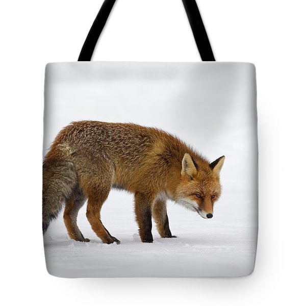 Tote Bag featuring the photograph 130201p051 by Arterra Picture Library