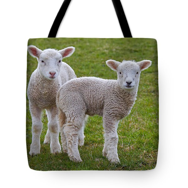Tote Bag featuring the photograph 130201p091 by Arterra Picture Library