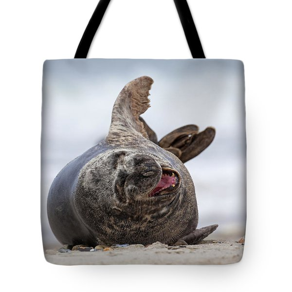 130201p148 Tote Bag