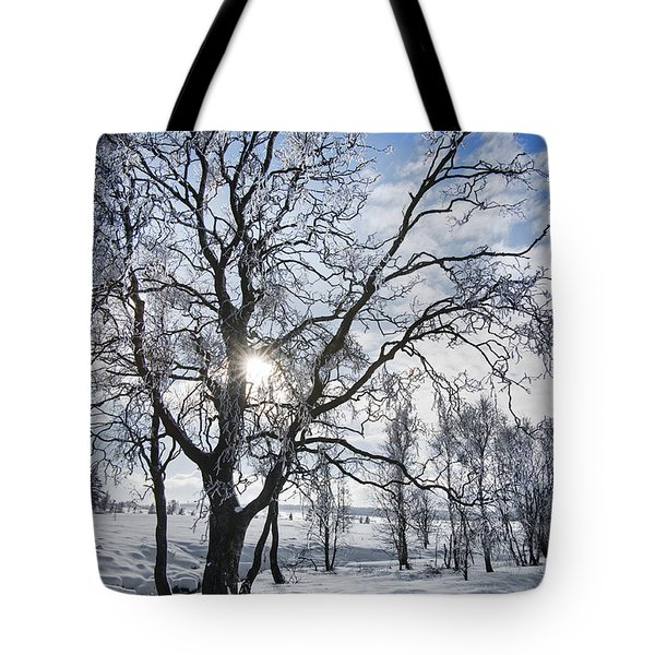 Tote Bag featuring the photograph 130201p341 by Arterra Picture Library