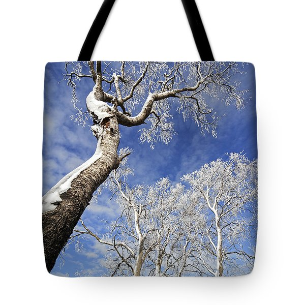 Tote Bag featuring the photograph 130201p343 by Arterra Picture Library