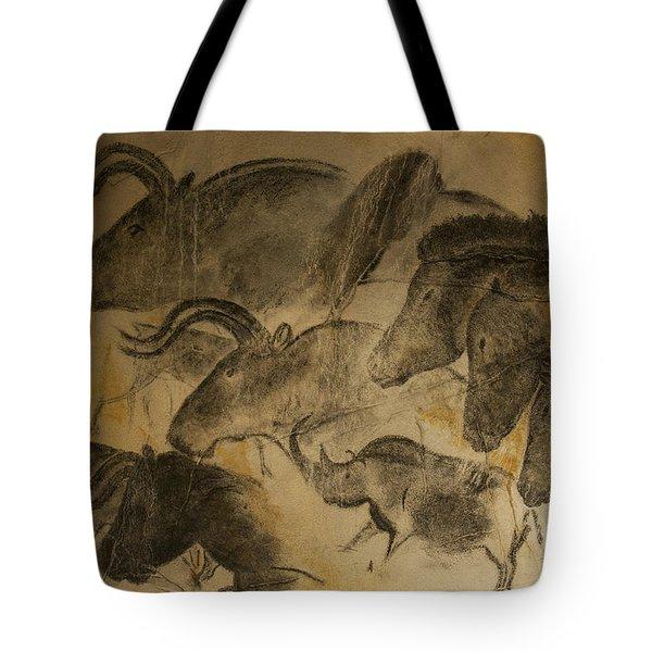 131018p051 Tote Bag