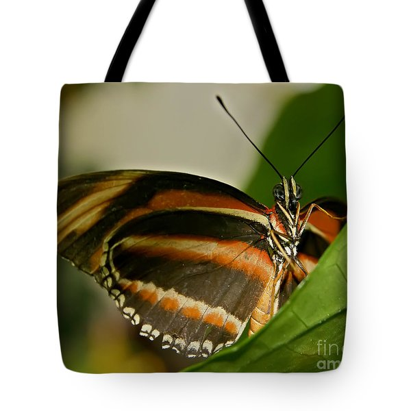 Tote Bag featuring the photograph Butterfly by Olga Hamilton