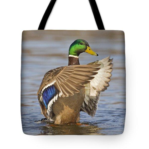 140314p301 Tote Bag