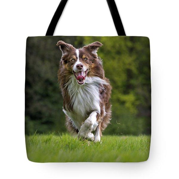 140420p079 Tote Bag