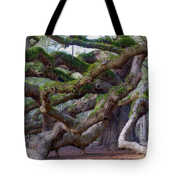 Angel Oak Tree Unique View Tote Bag