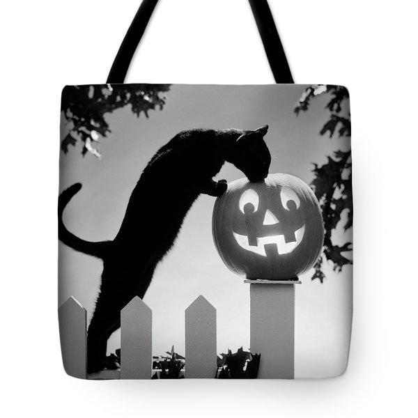 1970s Black Cat And Jack-o-lantern Tote Bag