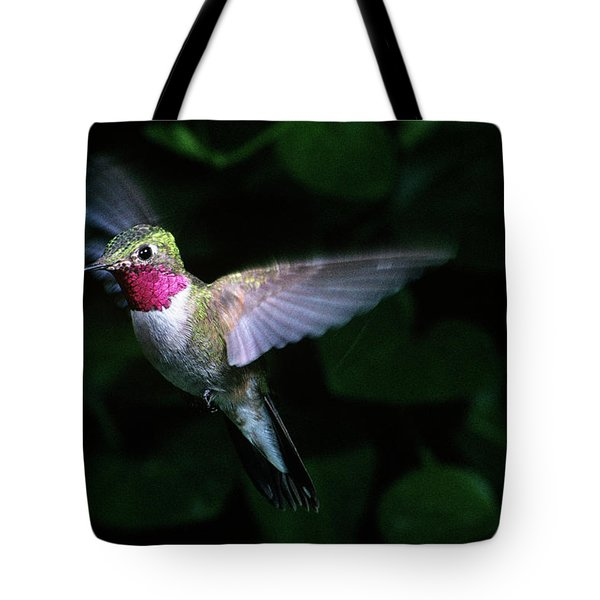 1980s Broad-tailed Hummingbird Tote Bag