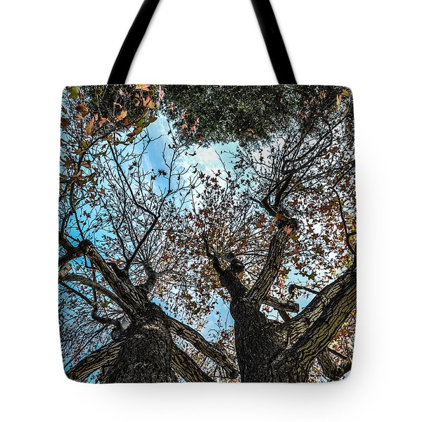 1st Tree Tote Bag