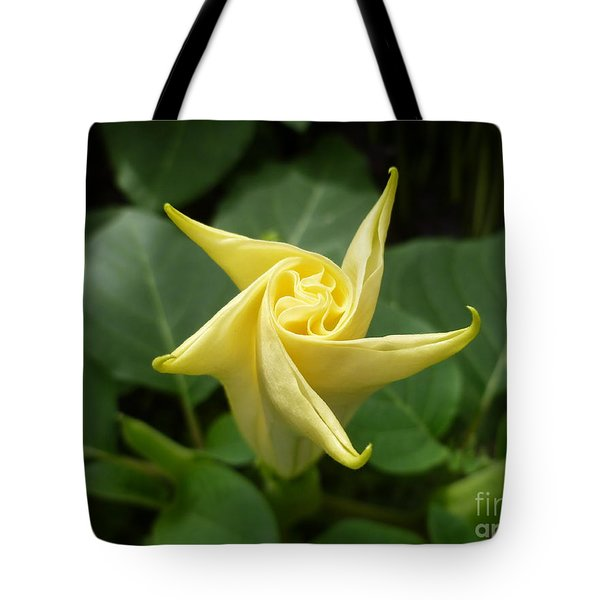 A Star Is Born 001 Tote Bag by Lingfai Leung