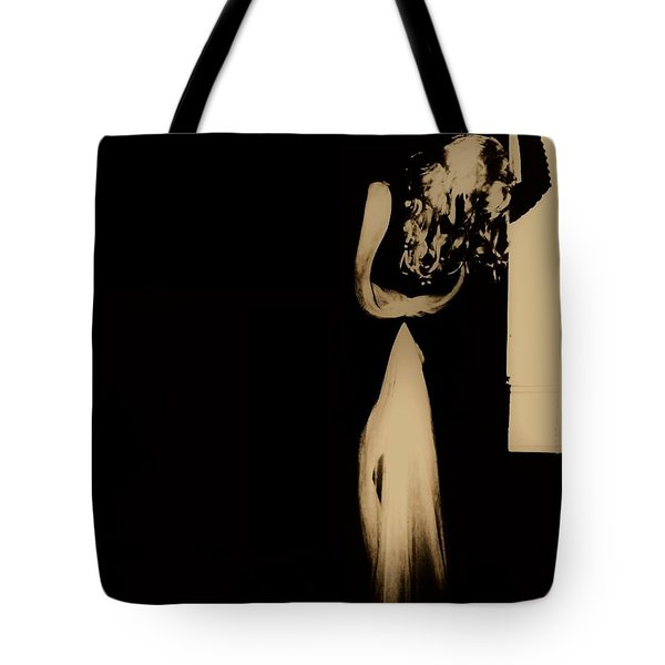 Tote Bag featuring the photograph Alone  by Jessica Shelton