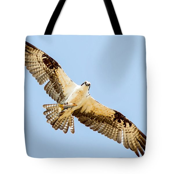 An Osprey Feeding On A Trout Tote Bag