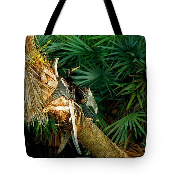 Anhinga Anhinga Anhinga On A Tree Tote Bag