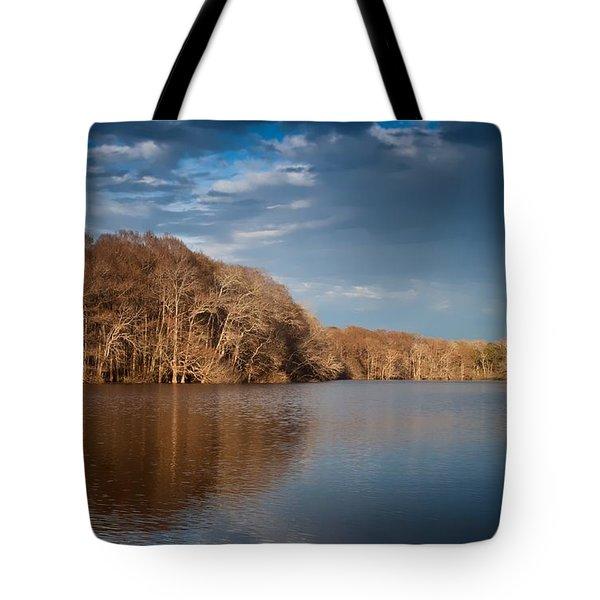 Apalachicola River  Tote Bag by Debra Forand