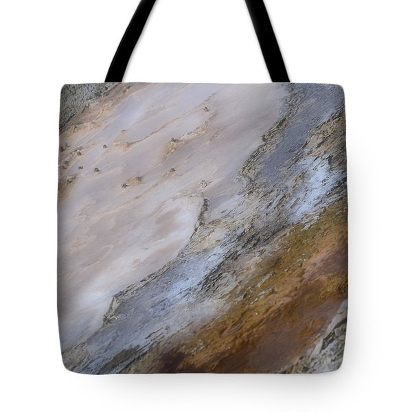 Tote Bag featuring the photograph Atilt by Nadalyn Larsen