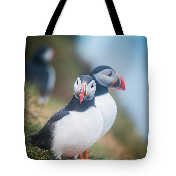 Atlantic Puffins Fratercula Arctica Tote Bag