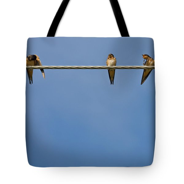 Barn Swallows Tote Bag by Melinda Fawver