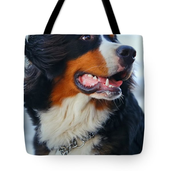 Beautiful Dog Portrait Tote Bag by Michal Bednarek
