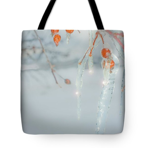 Before The Thaw Tote Bag