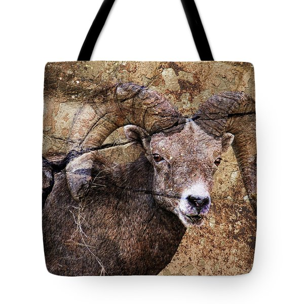 Bighorn Rock Tote Bag by Steve McKinzie