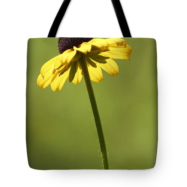Black-eyed Susan Tote Bag by Tony Cordoza