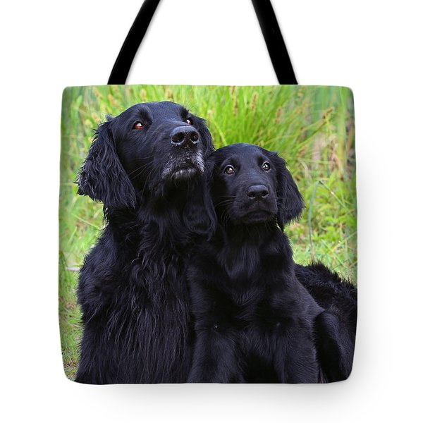 Black Flat Coated Retriever With Puppy Tote Bag