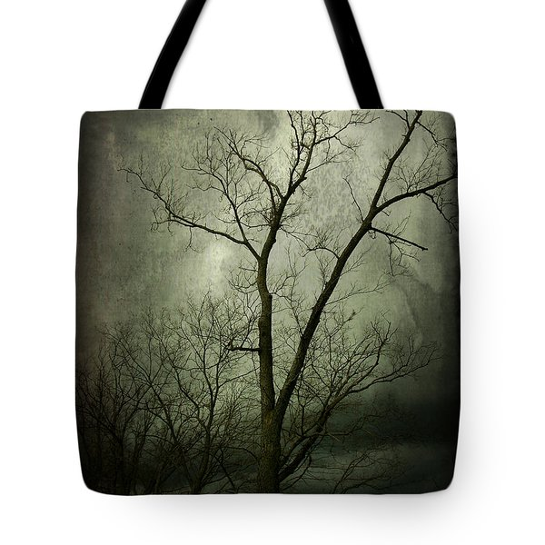 Bleak Tote Bag by Cynthia Lassiter