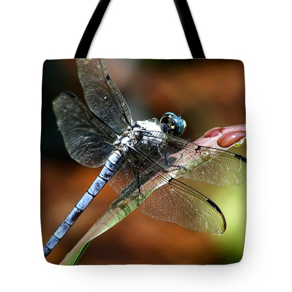 Tote Bag featuring the photograph Blue Dragonfly by Kelly Nowak