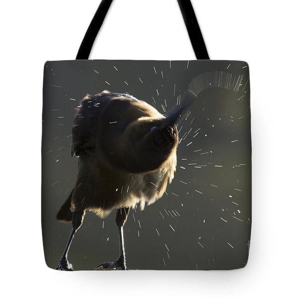 Boat Tailed Grackle Tote Bag by Meg Rousher