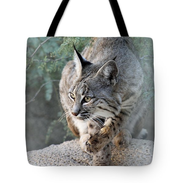 I Was Grooming Tote Bag