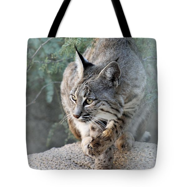 Tote Bag featuring the photograph I Was Grooming by Elaine Malott