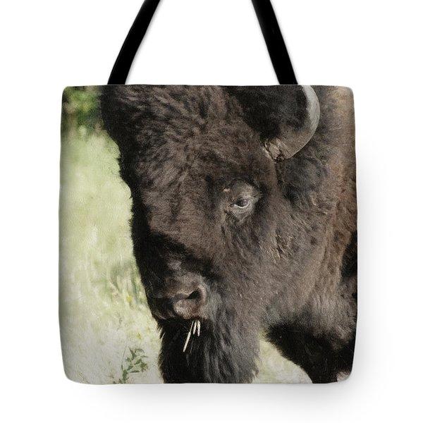 Buffalo Painterly Tote Bag by Ernie Echols