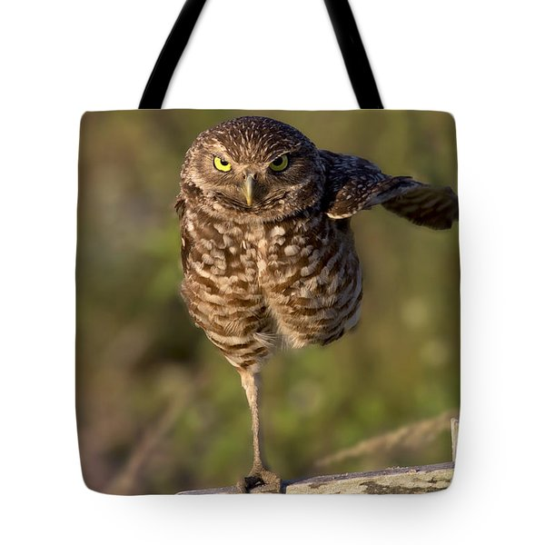 Burrowing Owl Photograph Tote Bag by Meg Rousher