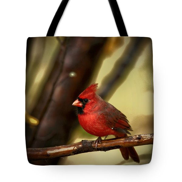 Cardinal Pose Tote Bag by Karol Livote