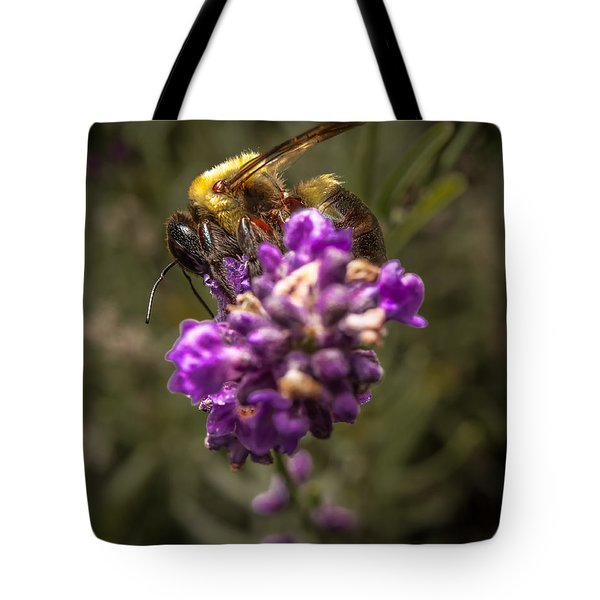Carpenter Bee On A Lavender Spike Tote Bag