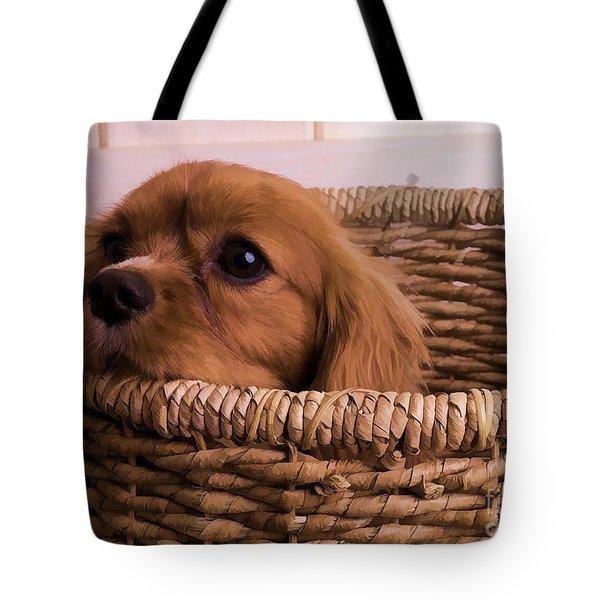 Cavalier King Charles Spaniel Puppy In Basket Tote Bag