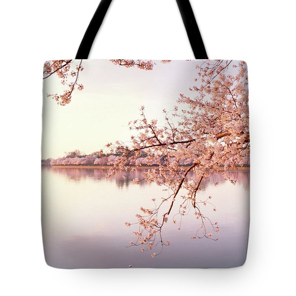 Cherry Blossoms At The Lakeside Tote Bag