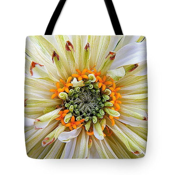 Chrysanthemum Fall In New Orleans Louisiana Tote Bag