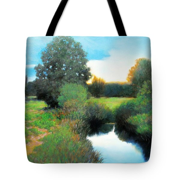 Clearing Skies Tote Bag by Kevin Lawrence Leveque