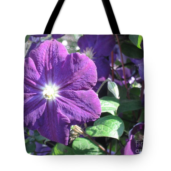 Clematis With Blazing Center Tote Bag