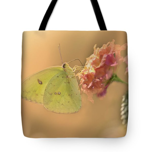 Clouded Sulphur Butterfly Tote Bag by Betty LaRue