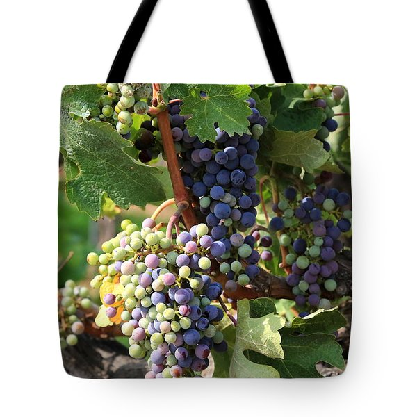 Colorful Grapes Tote Bag by Carol Groenen