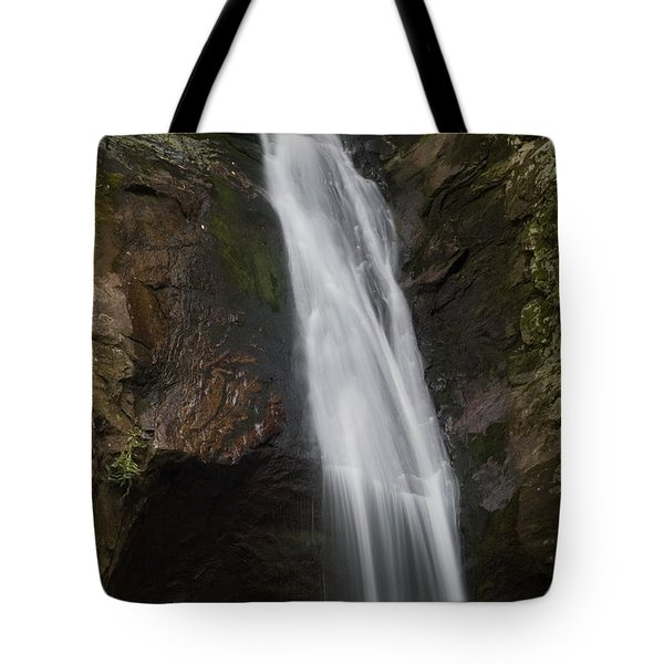 Courthouse Falls North Carolina Tote Bag