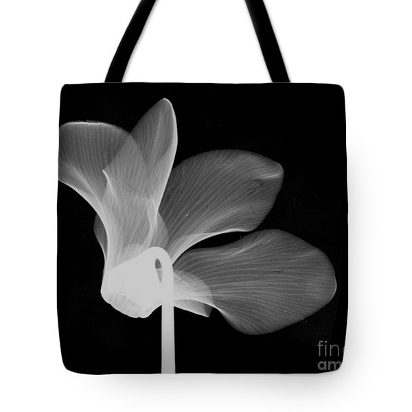 Cyclamen Flower X-ray Tote Bag by Bert Myers